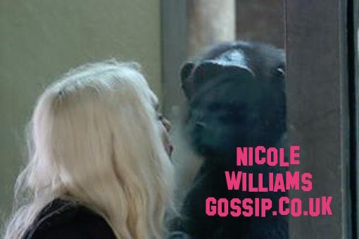 Nicole Williams Locks Lips With Ape At Monkey World